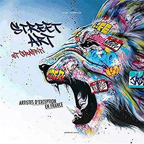 Couverture de Street art et graffitis, des artistes d'exception en France