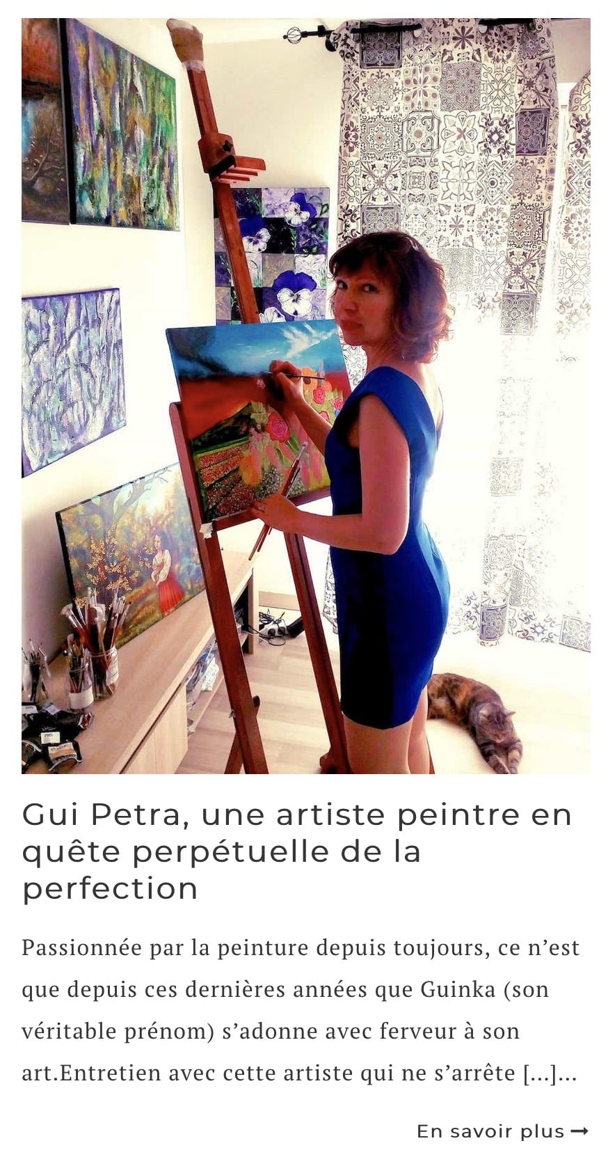 Article interview de l'artiste Gui Petra