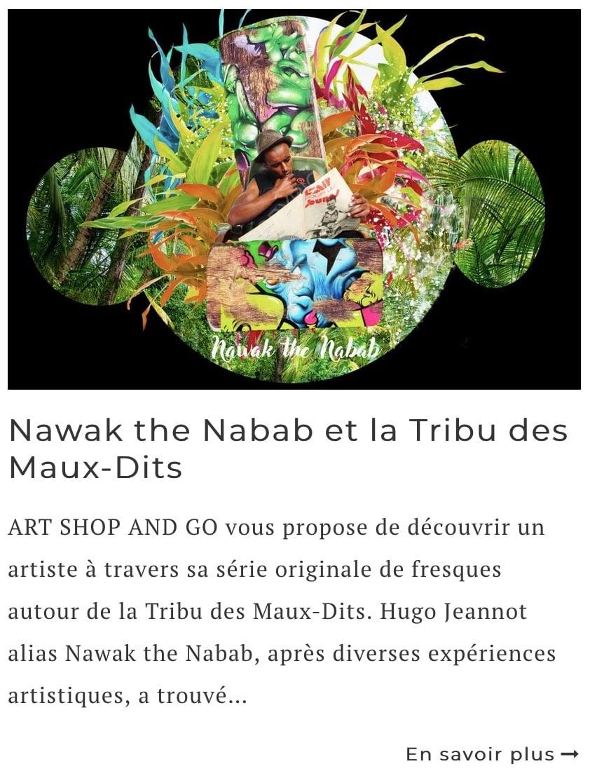 Article sur l'artiste Nawak the Nabab (Hugo Jeannot)